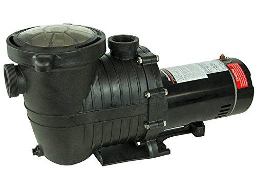 Mighty Niagara 1 HP In-Ground Single Speed Swimming Pool Pump 115V