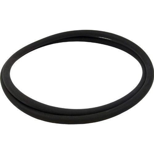 Pentair 152127 18 O-Ring Tank for Nautilus Pool or Spa DE Filter