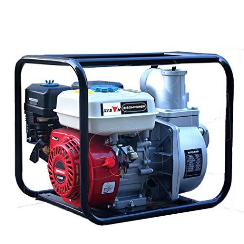Variable Speed High Performance Pool Pump 65 Horsepower gasoline water Pump Farmland irrigation machine