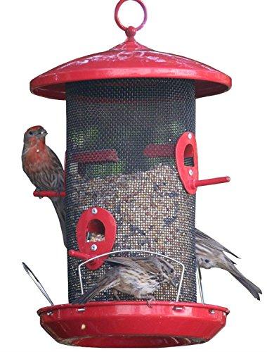 Wild Bird Seed Feeder Outdoor Decorative Garden Metal Hanging Food Dome Mesh House