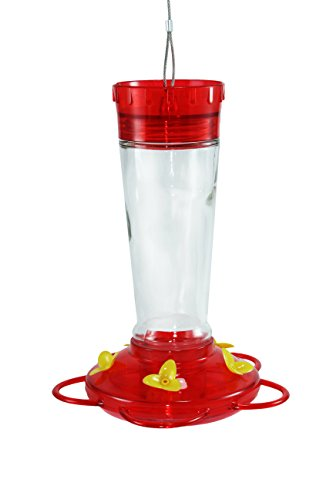 Durable Hanging Bottle Glass Hummingbird Red Feeder Attract More Hummingbirds To Your Houseamp Outdoor Garden Watch