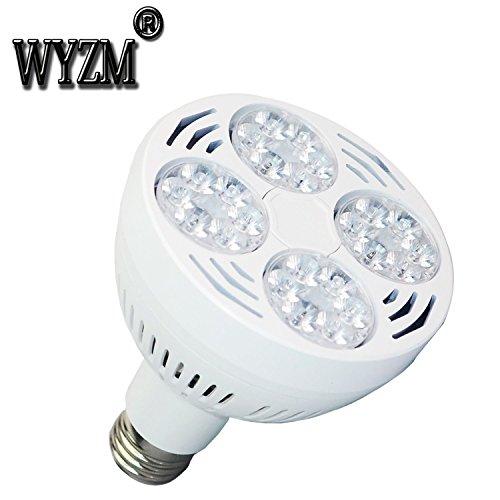 Wyzm 35watt Swimming Pool Led Light Bulb 6000k Daylight White E26 Screw Base 500w Traditional Bulb Replacement