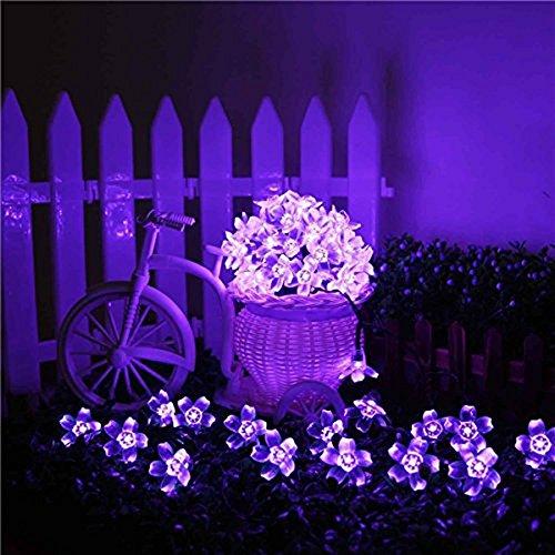 Kyson Solar Fairy String Lights 21ft 50 Led Purple Blossom Decorative Gardens Lawn Patio Christmas Trees Weddings