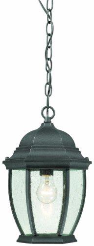 Thomas Lighting SL92337 Covington Outdoor Hanging Lantern Black