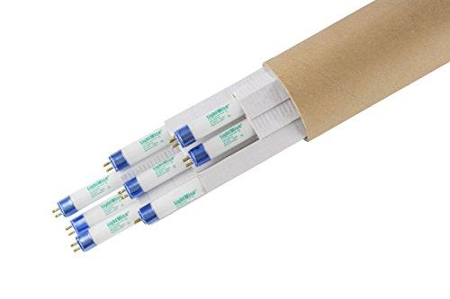 Lightingwise 4 FT 6500K T5 HO Fluorescent Grow Light Bulbs - Pack of 1482040 8 6500k - blue - veg