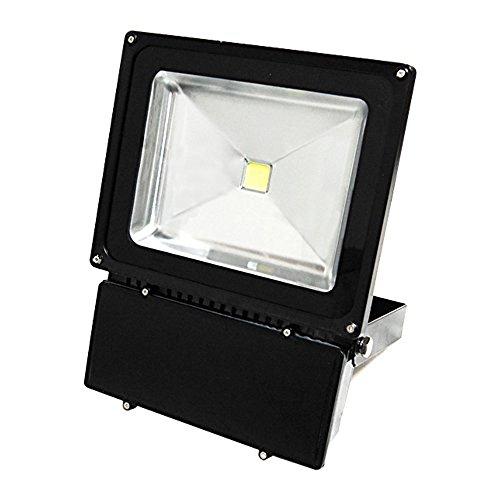 eTopLighting Super Bright LED Flood Light Indoor Outdoor Waterproof Lamp Landscape Lighting APL1174 100W Daylight 120V