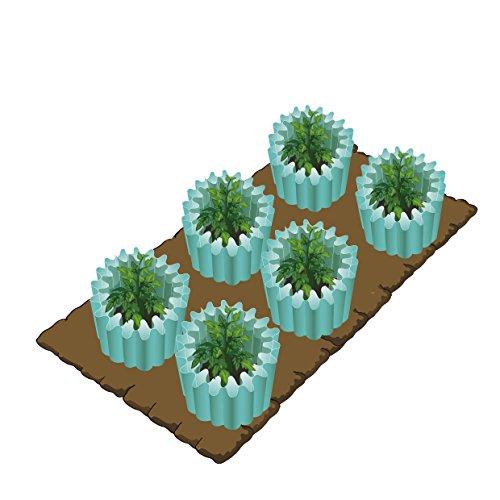 Water Wall Plant Protector Season Extender Gardening Teepee 12 Pack