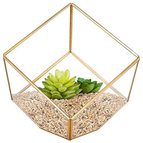 Homeideas Modern Artistic Clear Glass Cube Box Glass Plant Terrarium  Decorative Votive Candle Tea Light Holder