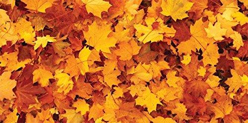 Autumn Leaves - ft x 4ft Drop Ceiling Fluorescent Decorative Ceiling Light Cover Skylight Film