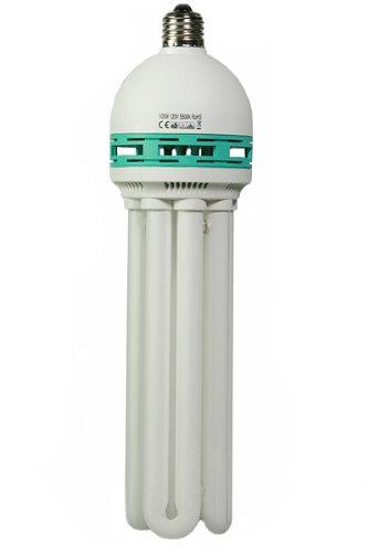 Hydroponic Full Spectrum CFL Grow Light Bulb 105 Watt 5500K Perfect Daylight balanced pure white light Bulb H105