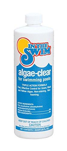 In The Swim Algae-Clear Pool Algaecide - 12 x 1 qt