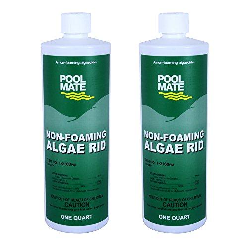Pool Mate 1-2160-02 Non-foaming Algae Rid Swimming Pool Algaecide 1-quart 2-pack