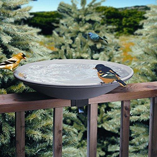 Allied Precision 20 in EZ Deck Tilt and Clean Non-Heated Bird Bath