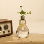 Fashionstorm-Home-Decor-Creative-Glass-Bulb-Vase-Water-Planting-Glass-Vessel-Desktop-Flower-Pots-water-Planter11.jpg