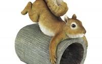 Design-Toscano-Crash-The-Squirrel-Gutter-Guardian-Downspout-Statue4.jpg