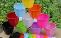 P2P-zita-3-5-Mini-Plastic-Flower-Seedlings-Nursery-Pot-Planter-Flower-Pot-with-Pallet-10-Colors-All-20.jpg