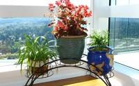 Elegant-Arch-Design-Black-Metal-Plant-Stand-Flower-Pots-Shelf-Unit-Decorative-Planter-Stand-MyGift-16.jpg